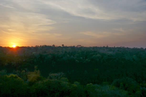 Sunrise over the Jungle in Iguazu National Park in South America stock photo