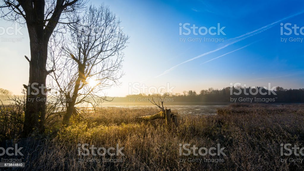 Sunrise over the pond with silhouettes of trees against the blue sky stock photo