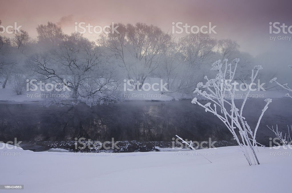 sunrise over trees covered with hoar near a river royalty-free stock photo