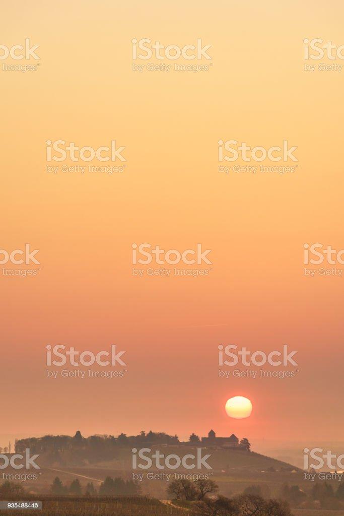 sunrise over vineyards at Rheingau stock photo