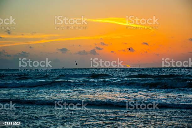 Photo of Sunrise Over Waves Crashing on Beach