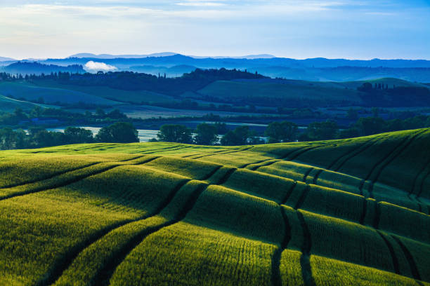 Sunrise over wavy hills in Tuscany stock photo
