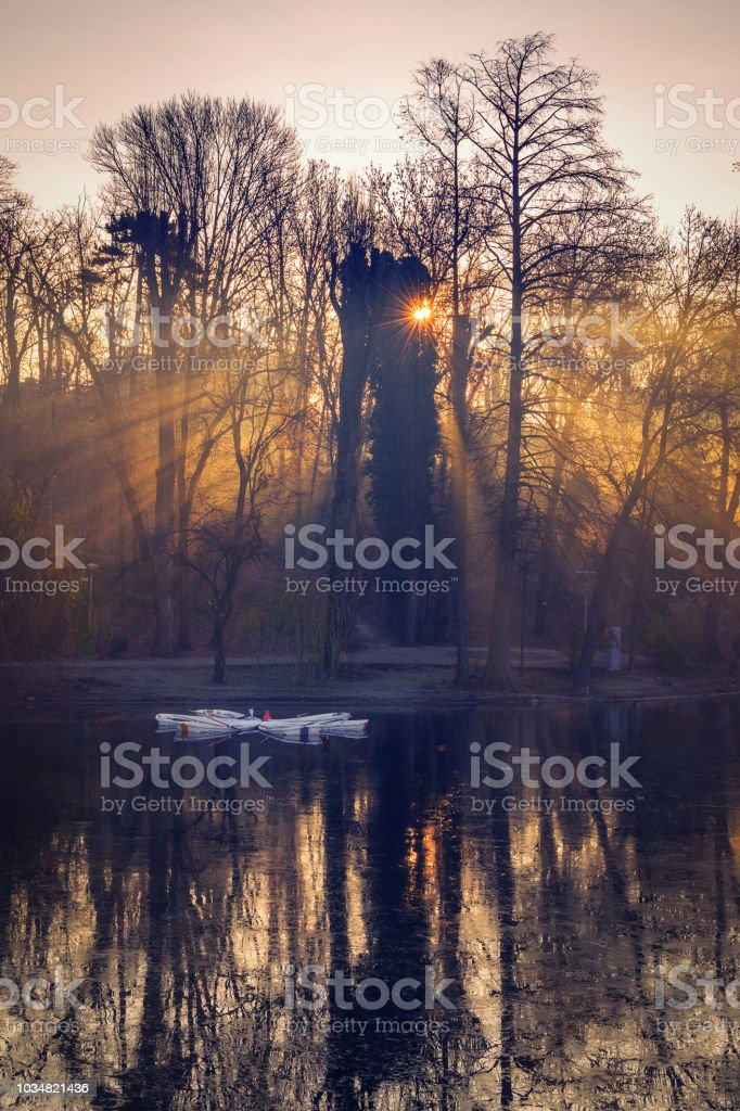 Sunrise scene in December on a lake with boats with fog and trees stock photo
