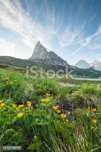 Sunrise Scenic over Famous Panoramic view of Tre cime di Lavaredo in the Dolomites, Italy landscape with curved road and cypress Italy Europe