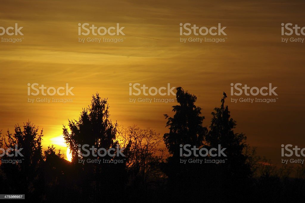 Sunrise setting in the country royalty-free stock photo