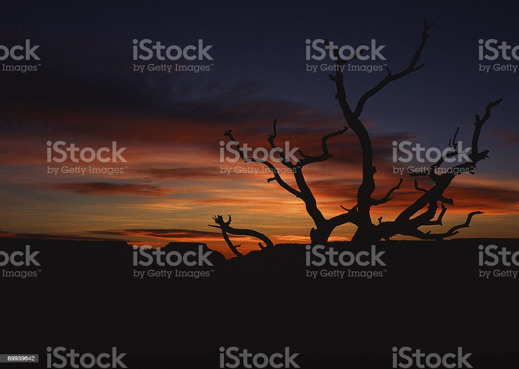 Sunrise Silhouette, Grand Canyon stock photo