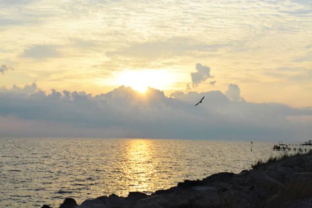 sunrise silhouette ocean  galveston texas sunset, sunrise - dawn - deign stock pictures, royalty-free photos & images