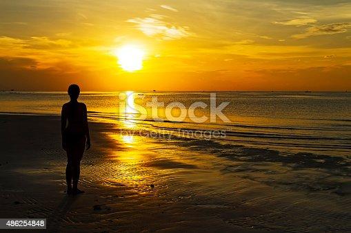 494377786istockphoto Sunrise silhouette person 486254848