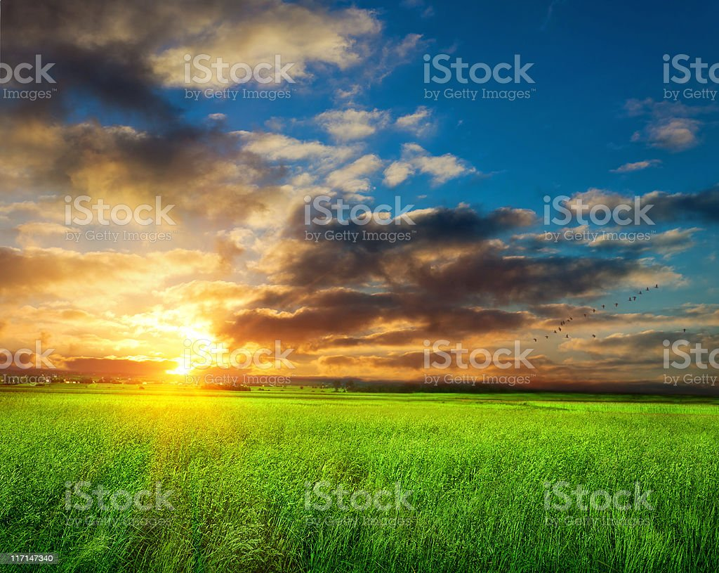 Sunrise spring landscape royalty-free stock photo