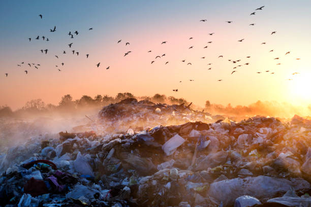 Sunrise Sun above the ocean of garbage beautiful foggy dawn of the Sun over a huge field of urban garbage, saturated with poisonous fumes of decomposition of organic waste and household chemicals evaporation stock pictures, royalty-free photos & images
