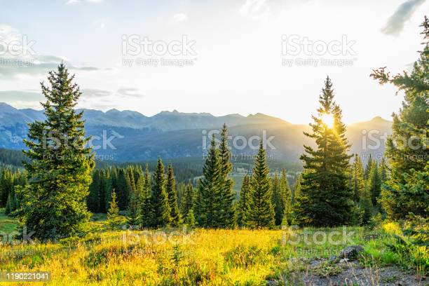 Photo of Sunrise sunlight sunburst through tree in San Juan mountains in Silverton, Colorado in 2019 summer morning with forest landscape view