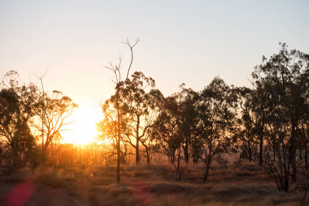 Sunrise view causing lens flare at Porcupine Gorge in Queensland stock photo