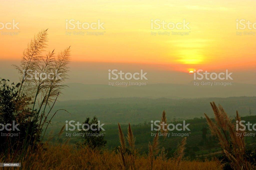 Sunrise view in grasveld met laag van de berg - Royalty-free Avondschemering Stockfoto