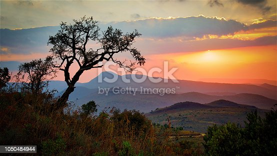 Majestic and Beautiful Sunrise View over Savannah in South Africa in Kruger Park