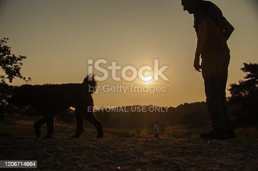 874818944 istock photo Sunrise walk with dogs 1206714664