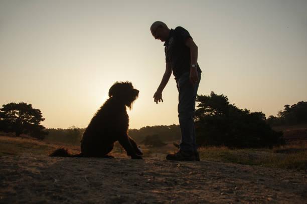 Sunrise walk with dogs picture id1206714691?b=1&k=6&m=1206714691&s=612x612&w=0&h=w6ebvlsapvkuqedjdmezreqonlt4mb9jn0a7va 1fww=
