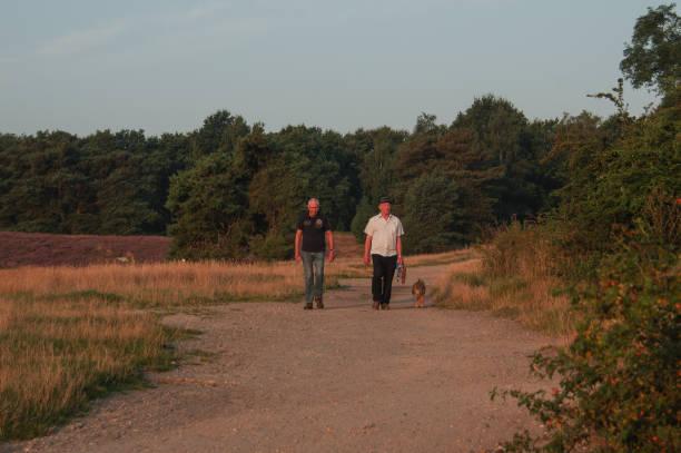 Sunrise walk with dogs picture id1206714709?b=1&k=6&m=1206714709&s=612x612&w=0&h=pyvyo3hoqfi0xerloljecdtxxrqpc 1dypnern8iiow=