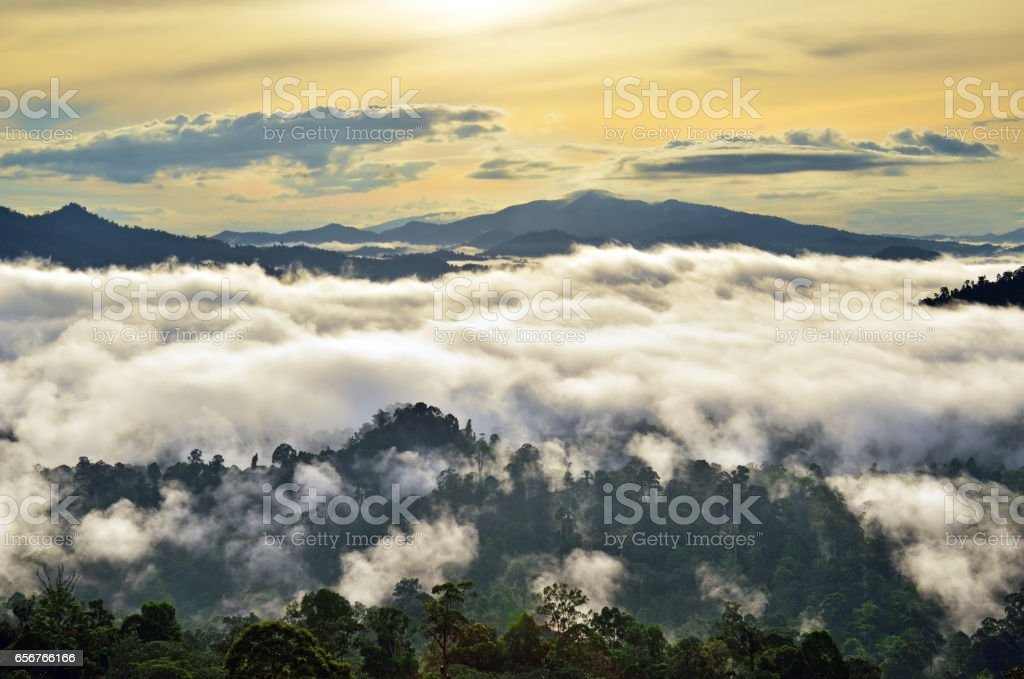 Sunrise with fogs and mist over rain forest in Borneo stock photo