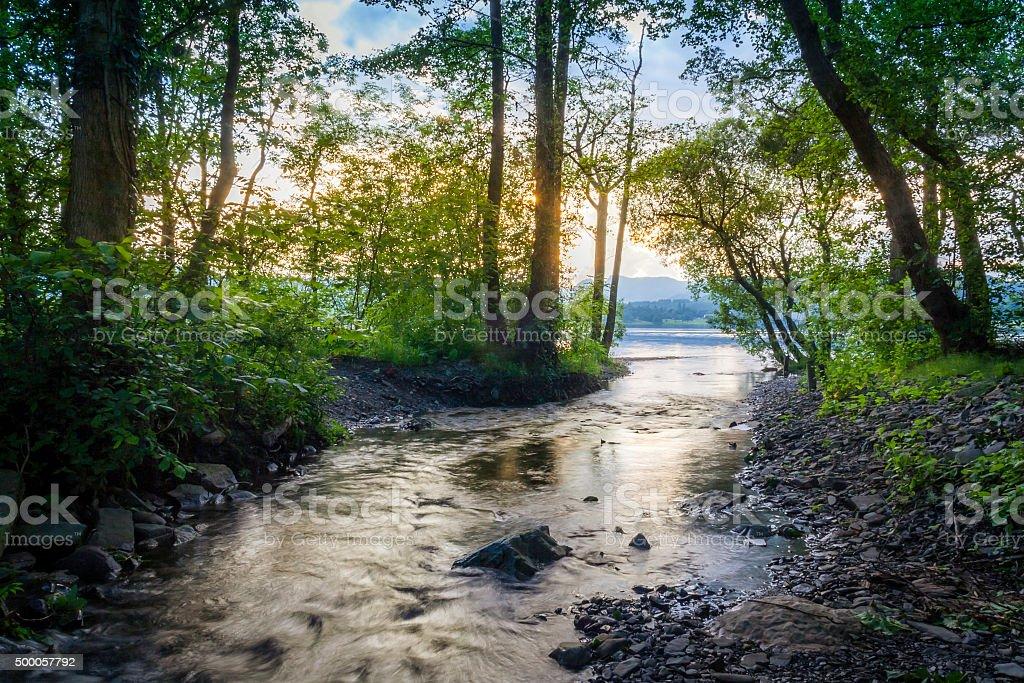 Sunrise, Woodland, River stock photo