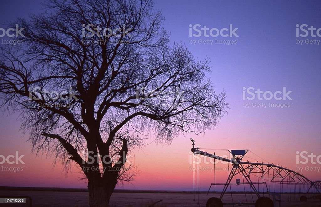 Sunset after glow light silhouettes tree and equipment royalty-free stock photo