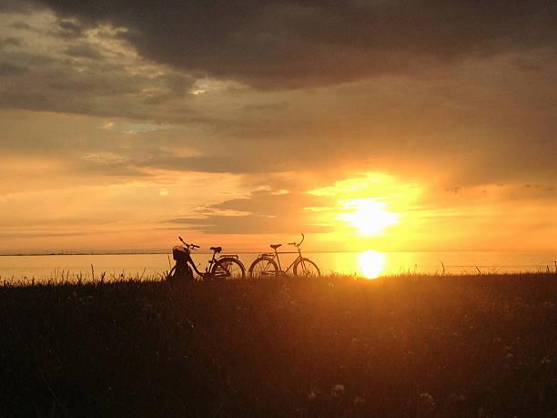 sunset and bicycles - öresund bildbanksfoton och bilder
