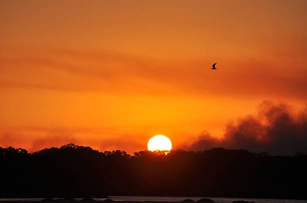 Sunset and Bushfire stock photo