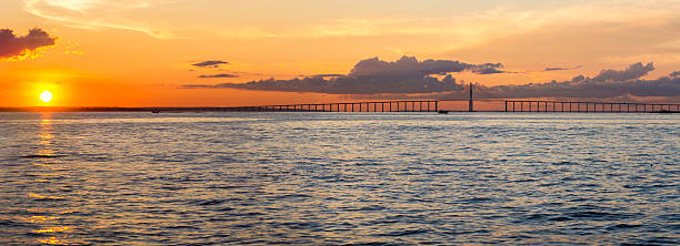Sunset and Manaus Iranduba Bridge over the Amazon, Brazil Panorama of the Manaus-Iranduba Bridge (called Ponte Rio Negro in Brazil) during the sunset. Bridge over the Rio Negro with 3595 meters of length that links the cities of Manaus and Iranduba. It was opened on Oct 24, 2011 rio negro brazil stock pictures, royalty-free photos & images