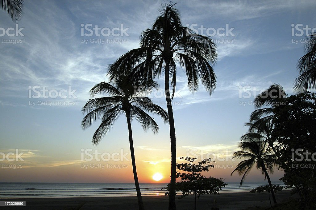 Sunset and plam trees on Pacific ocean, Montelimar, Nicaragua royalty-free stock photo