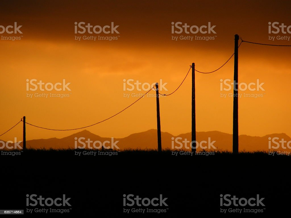 Sunset and telephone poles royalty-free stock photo