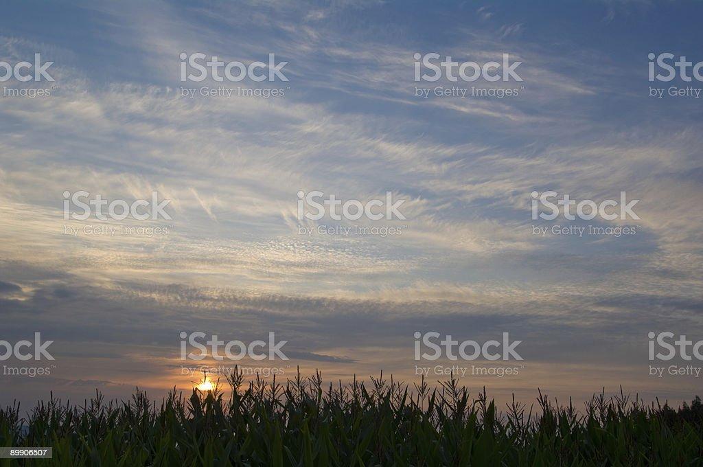 Pôr do sol no fundo foto de stock royalty-free