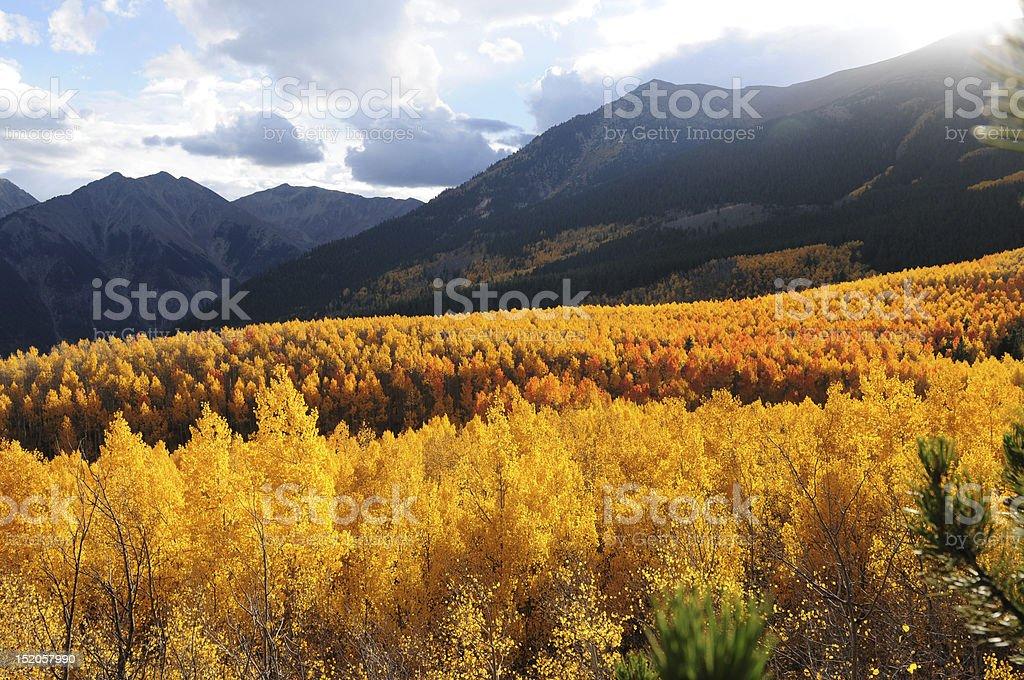 Sunset Aspen Valley stock photo