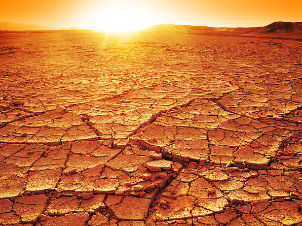 Sunset at a desert stock photo
