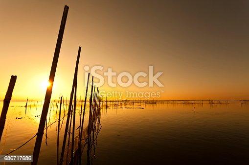 istock Sunset at Albufera lake in Valencia El Saler 686717686
