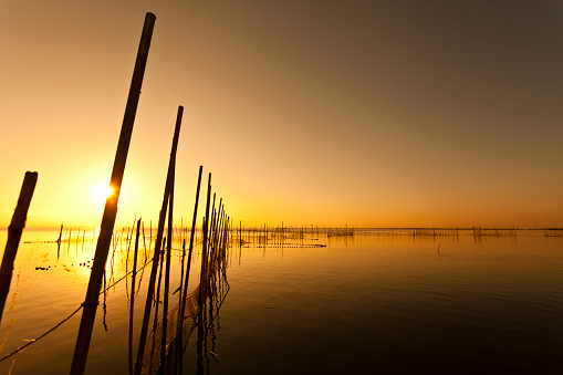 Sunset at Albufera lake in Valencia El Saler