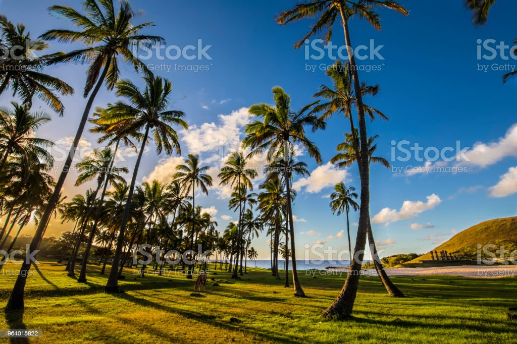 Sunset at Anakena Beach, Easter Island - Royalty-free Aerial View Stock Photo