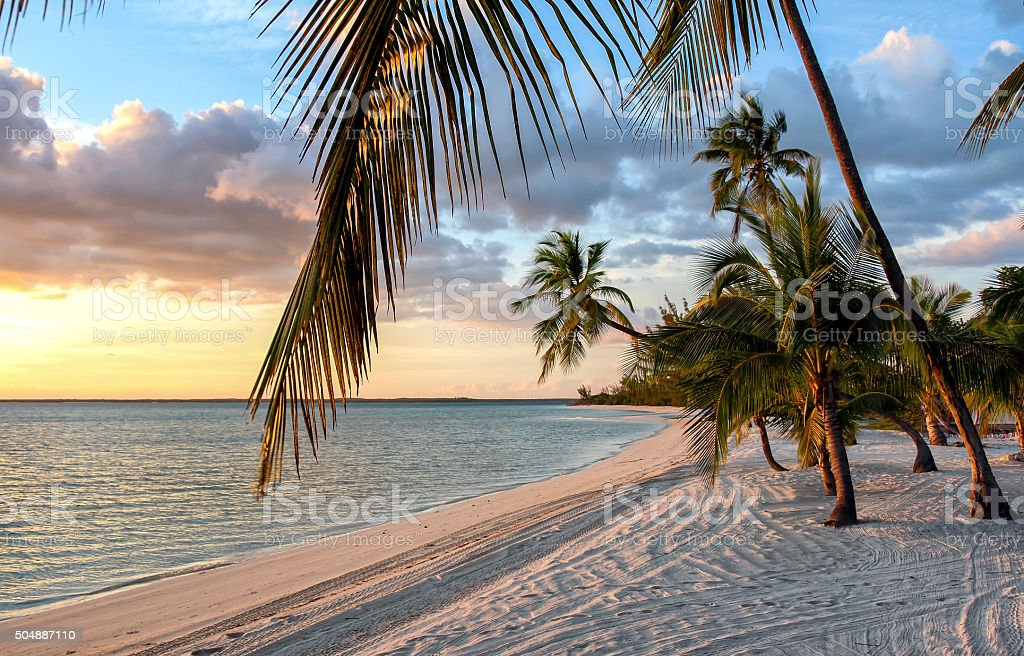 Sunset at Beach at the Bahamas stock photo