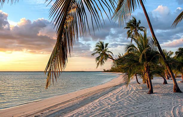 tramonto sulla spiaggia di bahamas - bahamas foto e immagini stock
