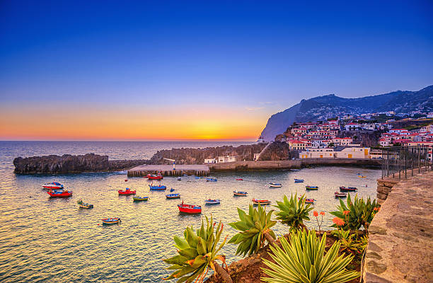 Sunset at Camara de Lobos on Madeira The beautiful fishing village of Camara de Lobos on the portugese Island of Madeira at sunset; in the back the landmark Cabo Girao, the world second highest steep cliff (580 m). rocky coastline stock pictures, royalty-free photos & images