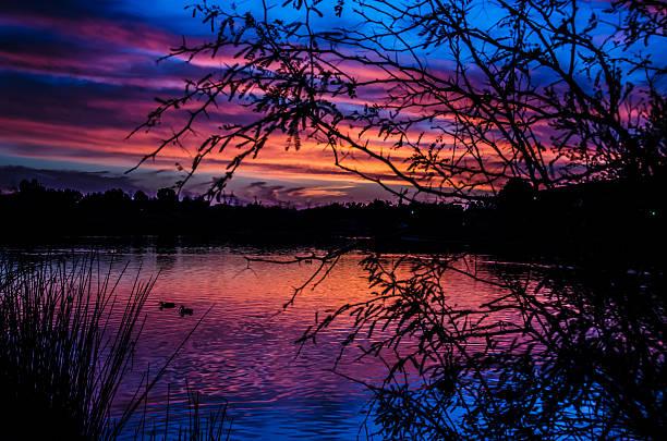 Sunset at Gilbert Riparian Preserve At Water Ranch stock photo