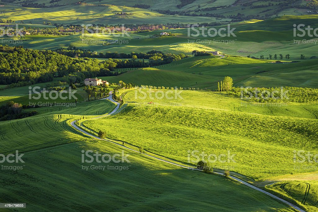 Sunset at green valley in Tuscany royalty-free stock photo