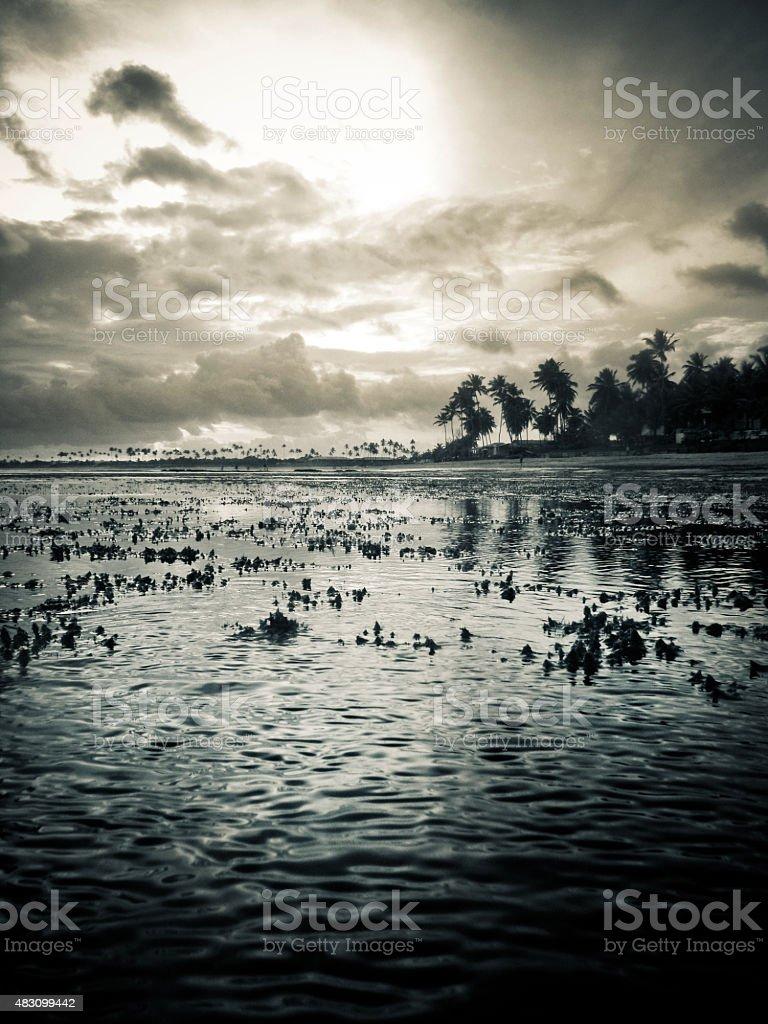 Guarajuba pôr do sol na praia, na Bahia, Brasil - foto de acervo