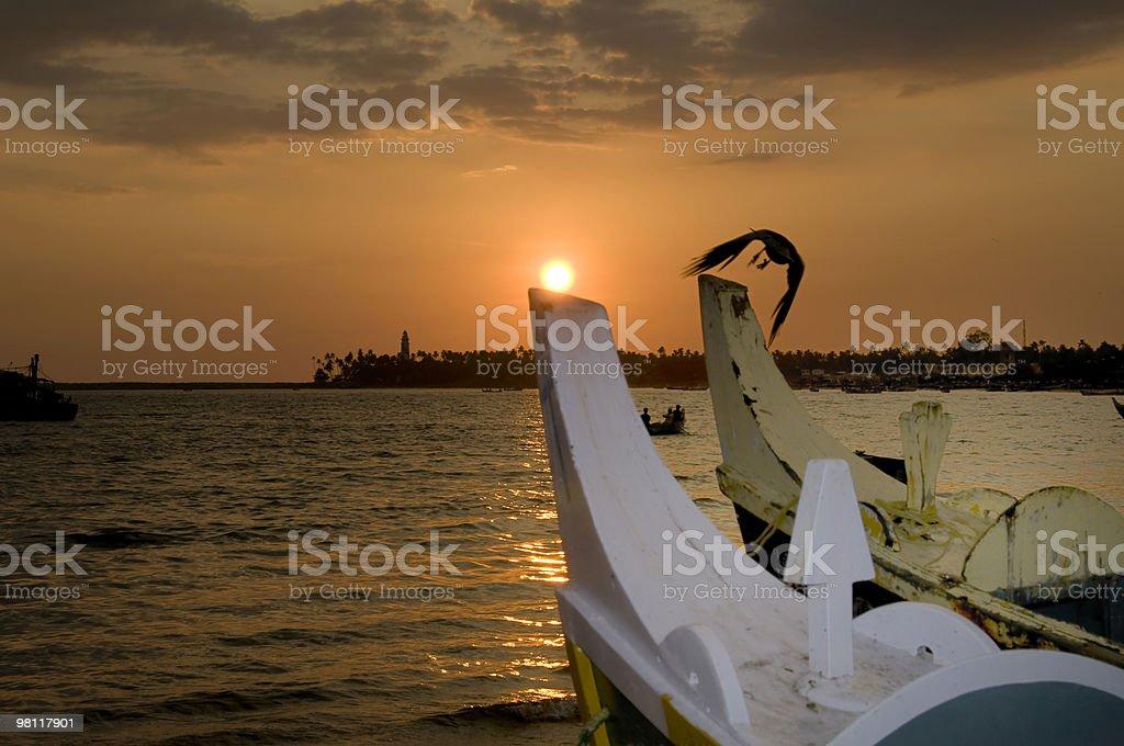 Sunset at Kollam beach with flying bird. royalty-free stock photo