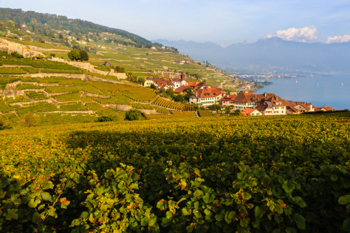 sunset at Lavaux