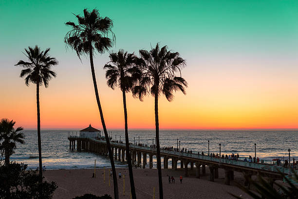 Sunset at Manhattan Beach. Vintage processed. Palm trees at Manhattan Beach. Vintage processed. Fashion travel and tropical beach concept. venice beach stock pictures, royalty-free photos & images