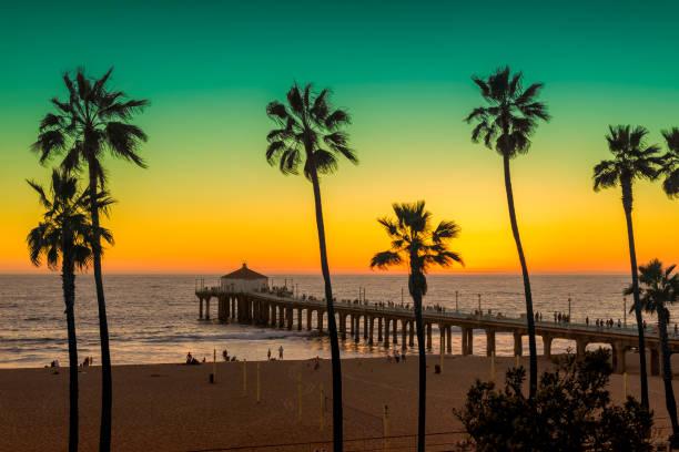 Sunset at Manhattan Beach. Vintage processed. Palm trees on Manhattan Beach and pier at Sunset. Vintage processed. venice beach stock pictures, royalty-free photos & images