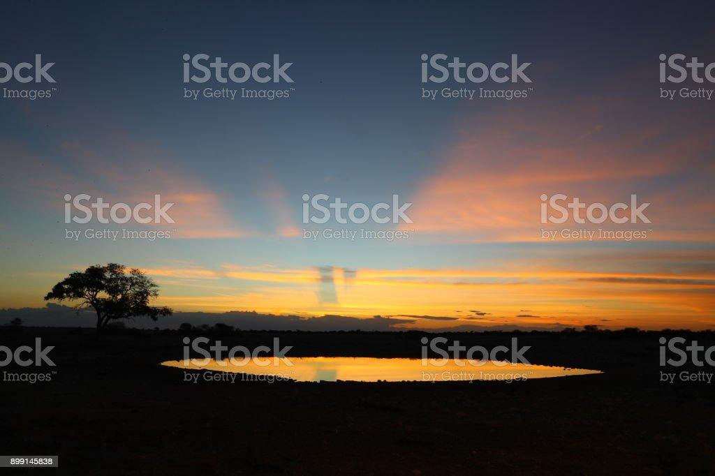 Sunset at Okaukuejo waterhole stock photo