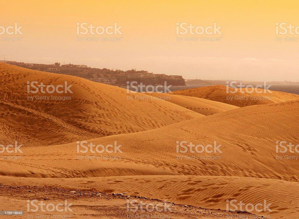 Sunset at Sand Dune of Maspalomas (Gran Canaria) stock photo