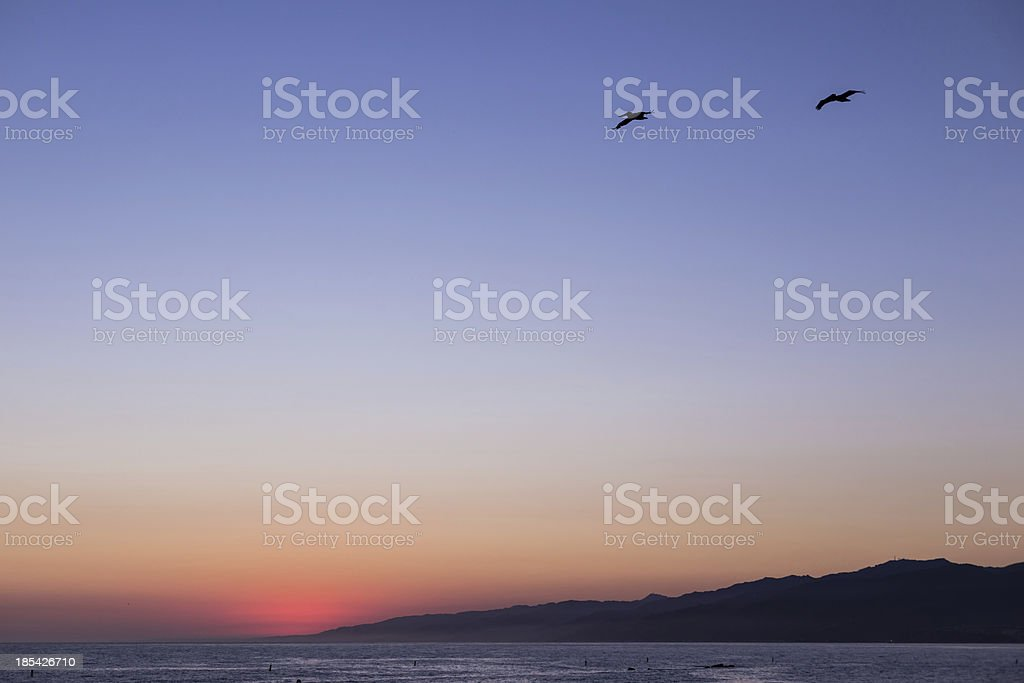 sunset at Santa Monica with two seagulls royalty-free stock photo