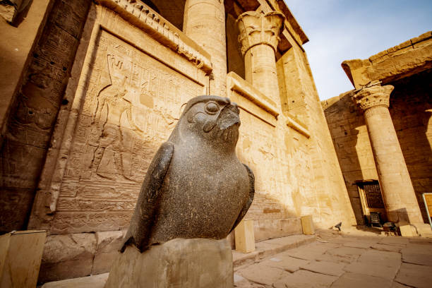 Sunset at Temple of Edfu with the statue of falcon God Horus stock photo