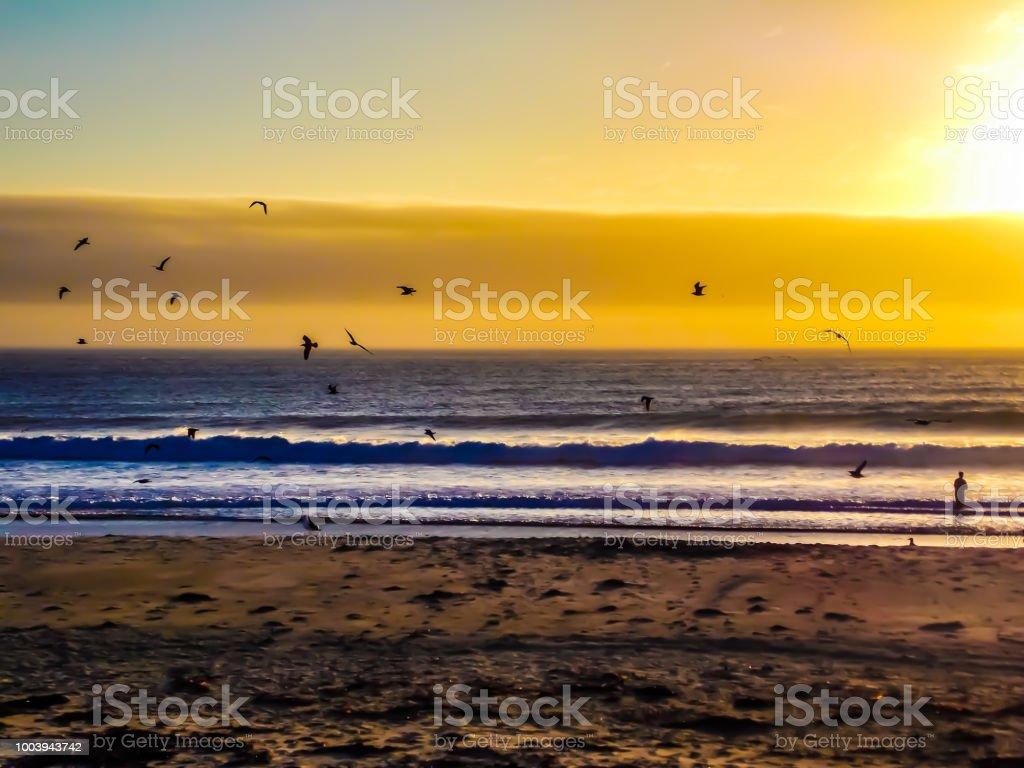 Sunset at the beah stock photo